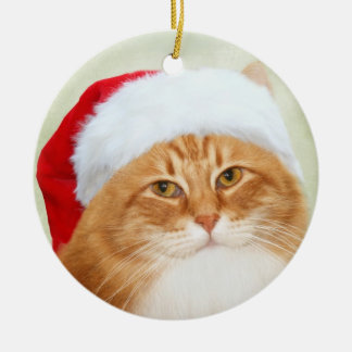 Cat Santa Claus Christmas Ornament