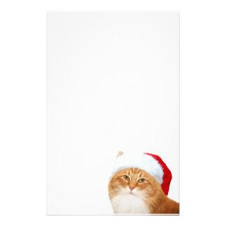 Cat Santa Claus Custom Stationery