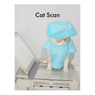 Cat Scan Postcards