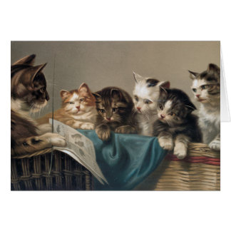 CAT SCHOOL CARD