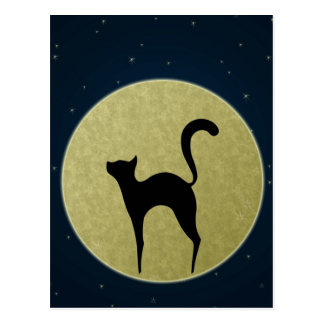 Cat silhouette and moon Postcard