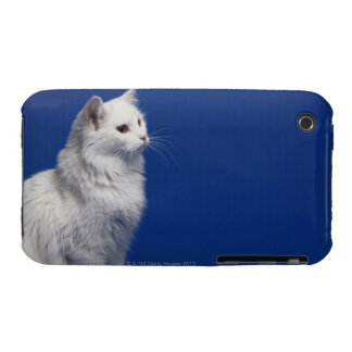 Cat sitting against blue background iPhone 3 covers