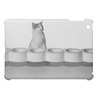 Cat sitting and licking beside pet bowl on white iPad mini case