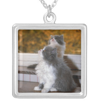 Cat sitting and looking up silver plated necklace
