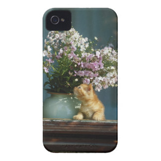 Cat sitting besides flower vase on window sill iPhone 4 cases