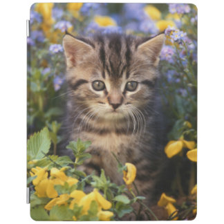 Cat Sitting In Flower Garden iPad Cover