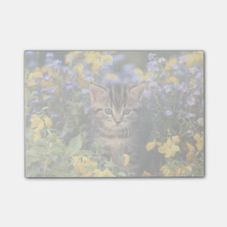 Cat Sitting In Flower Garden Post-it Notes