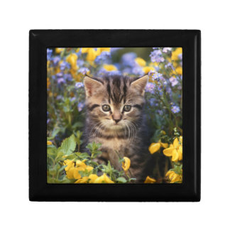Cat Sitting In Flower Garden Small Square Gift Box