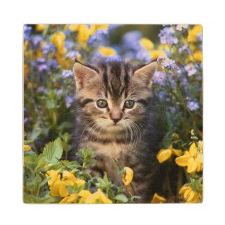 Cat Sitting In Flower Garden Wood Coaster