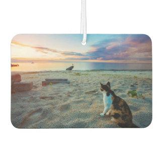 Cat Sitting On A Beach Car Air Freshener