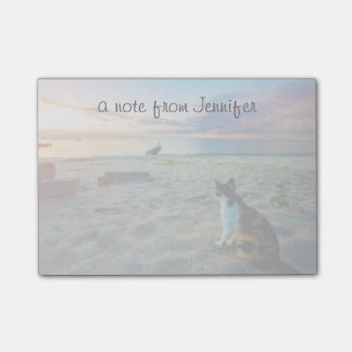 Cat Sitting On A Beach Post-it Notes