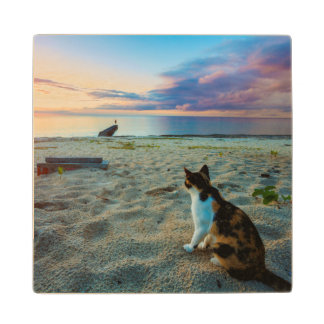 Cat Sitting On A Beach Wood Coaster