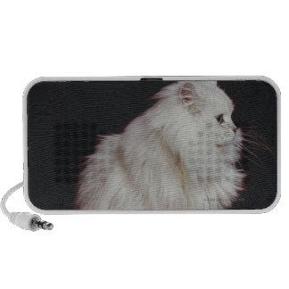 Cat sitting on black background, close-up mini speaker