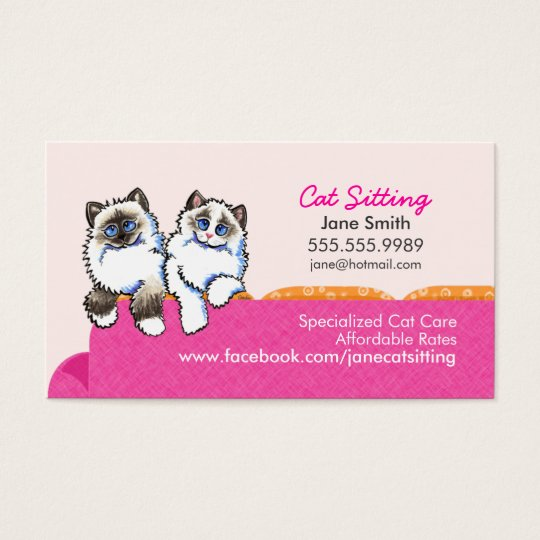 Cat Sitting Ragdoll Couch Pink Business Card
