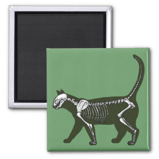 Cat Skeleton Magnet