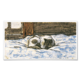 Cat Sleeping on a Bed by Claude Monet Art Photo