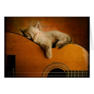 Cat sleeping on guitar card