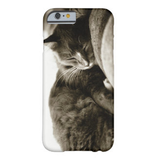 Cat sleeping on sofa (B&W sepia tone) Barely There iPhone 6 Case