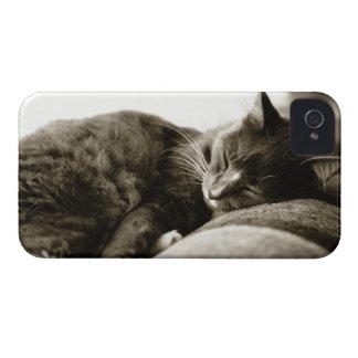 Cat sleeping on sofa (B&W sepia tone) iPhone 4 Covers