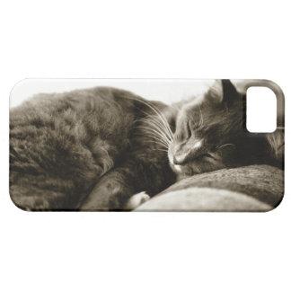 Cat sleeping on sofa (B&W sepia tone) iPhone 5 Cover