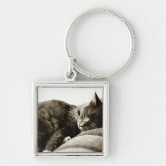 Cat sleeping on sofa (B&W sepia tone) Silver-Colored Square Key Ring