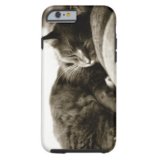 Cat sleeping on sofa (B&W sepia tone) Tough iPhone 6 Case