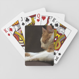 Cat sleeping on sofa playing cards