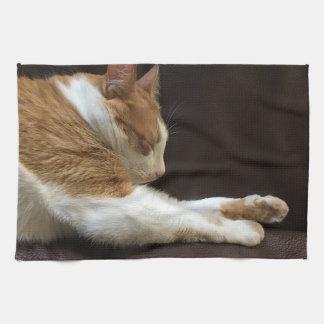 Cat sleeping on sofa tea towel