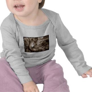 cat sleeping t shirts