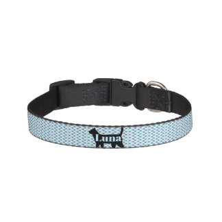Cat Small Collar