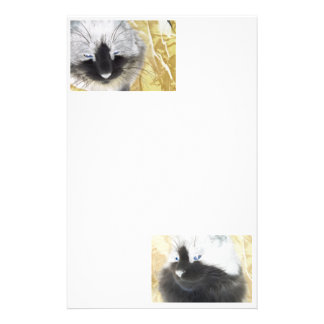 Cat Special Effects Stationery Design