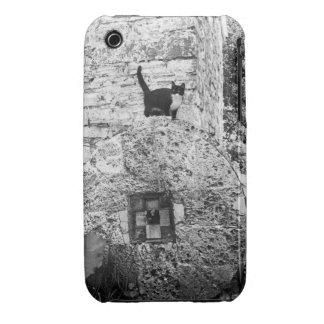 Cat standing on old stone wheel iPhone 3 case