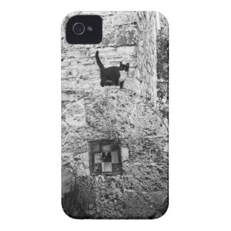 Cat standing on old stone wheel iPhone 4 Case-Mate case