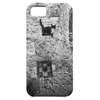 Cat standing on old stone wheel iPhone 5 cover