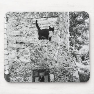 Cat standing on old stone wheel mouse pad