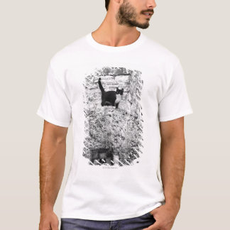 Cat standing on old stone wheel T-Shirt