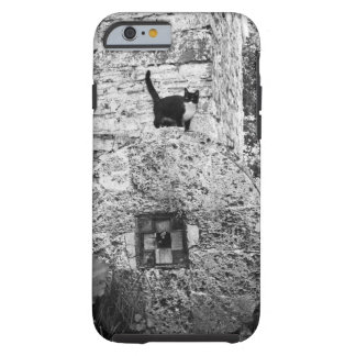 Cat standing on old stone wheel tough iPhone 6 case