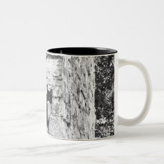 Cat standing on old stone wheel Two-Tone coffee mug