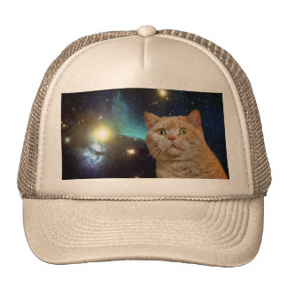 Cat staring at the universe cap