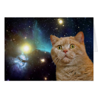 Cat staring at the universe greeting card