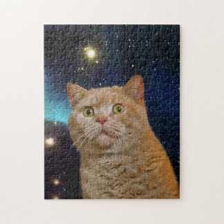 Cat staring at the universe puzzles