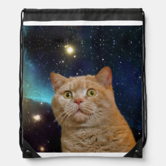 Cat staring at the universe rucksack