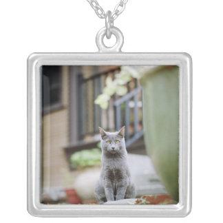 Cat staring custom jewelry