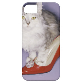Cat stepping into high heel case for the iPhone 5