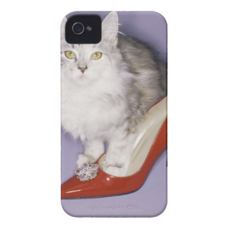 Cat stepping into high heel Case-Mate iPhone 4 case
