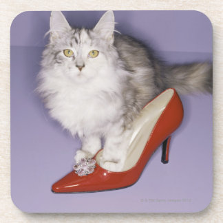 Cat stepping into high heel coaster