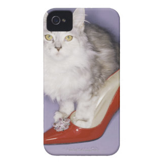 Cat stepping into high heel iPhone 4 cases