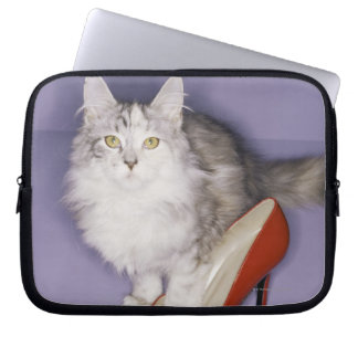 Cat stepping into high heel laptop sleeve