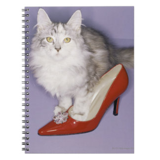 Cat stepping into high heel spiral notebook