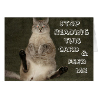 "Cat ""STOP READING THIS CARD & FEED ME"" Card"